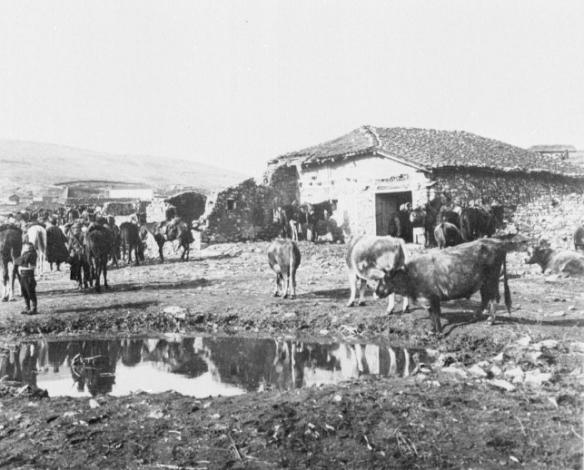 arnissa9-1912-13